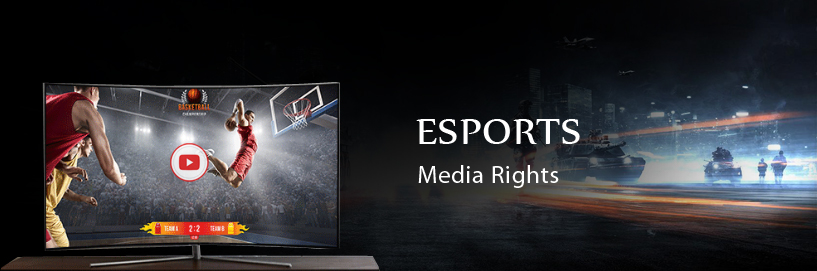 Esports leagues to bet big on monetizing online avenues